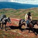 Horseback travel in Alaska