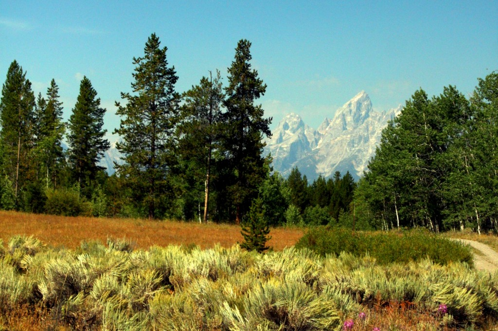 The Tetons are ever present