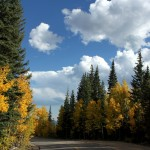 Spectacular colors on Brainard Lake Road