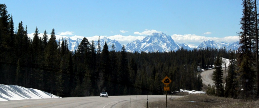 Our firt view of the Tetons, only 20 miles to go