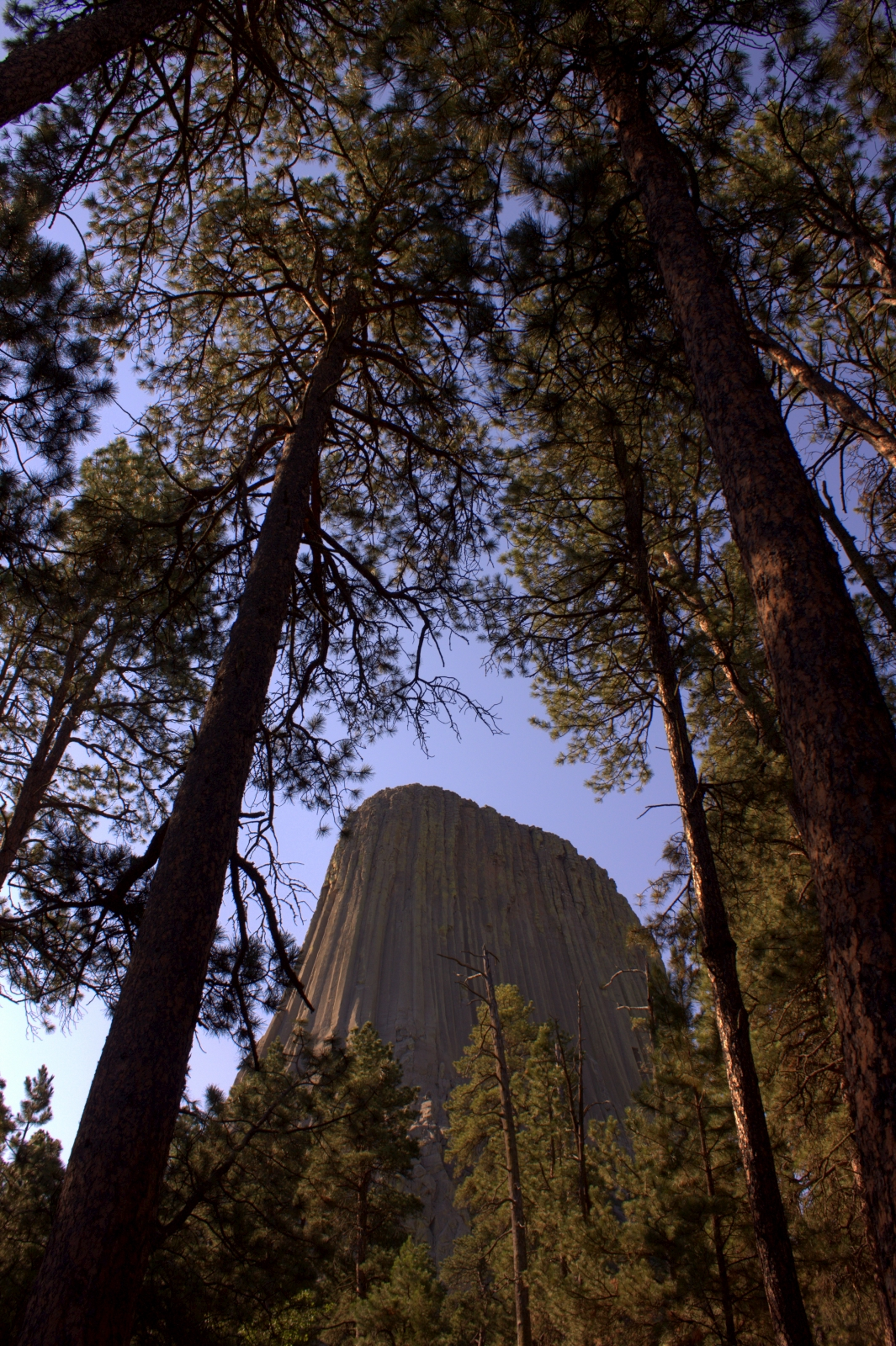 devils tower single catholic girls Daredevil (tv series 2015– ) cast and crew credits, including actors, actresses, directors, writers and more.